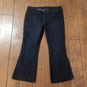 Ana Dark Wash Flare Stretch Jean's Size 18W